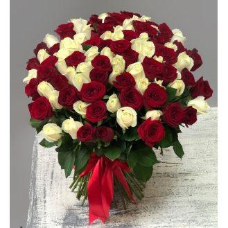 Лед и пламя - 101 красно-белая роза
