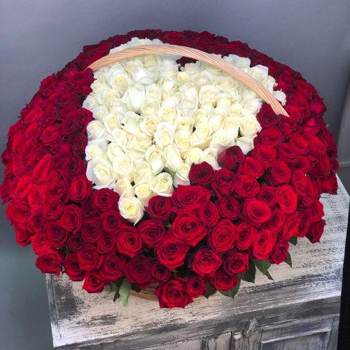 Головокружительный поцелуй -  301  роза
