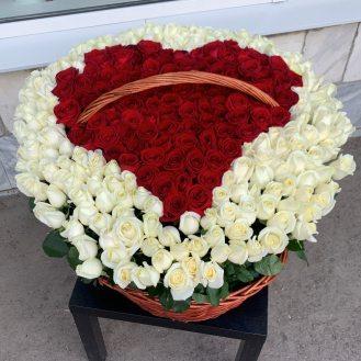 Пламенное сердце -  301  роза