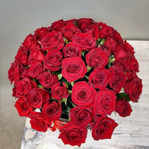 Розы Люкс