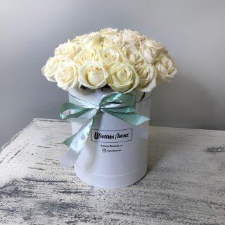 Белые Розы Люкс