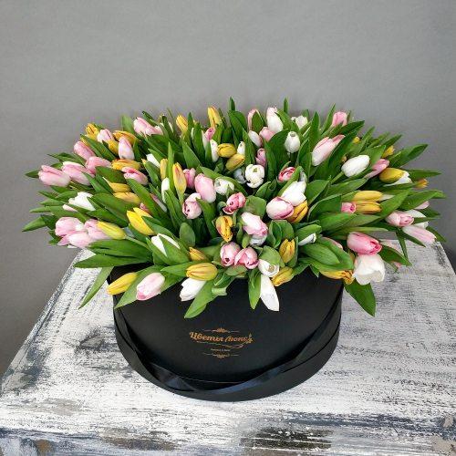 Море Тюльпанов - 251 тюльпан в коробке