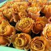 Энергия - 51 оранжевая роза