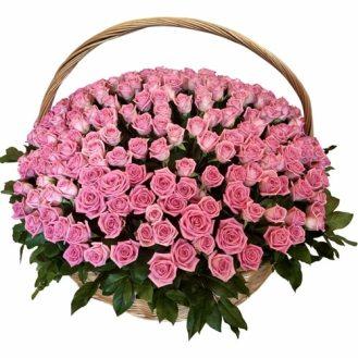 301 розовая роза