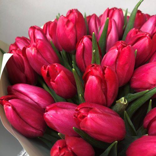 Вихрь страсти - 101 красный тюльпан
