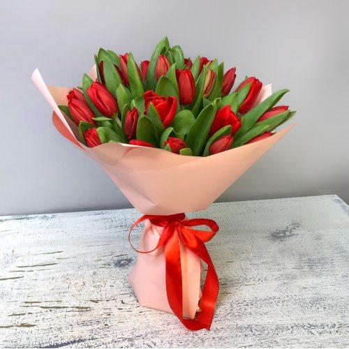 Мартовское утро -25 красных тюльпанов