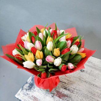 Радуга - 51 разноцветный тюльпан