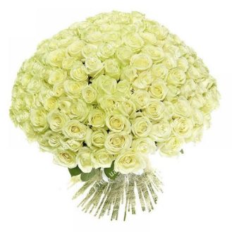 301 белая роза